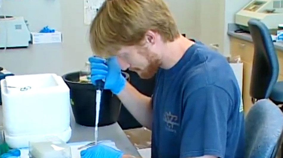 stem cell lab