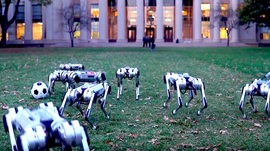 mit mini cheetah robot dogs